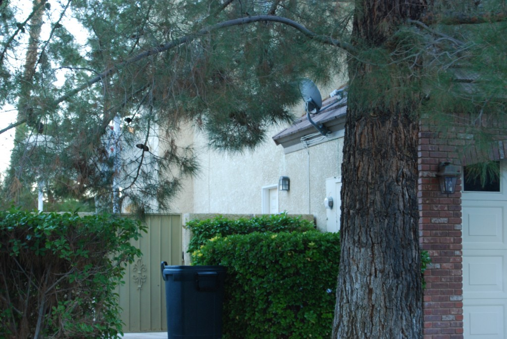 Another Blatant Violation and Selective Enforcement at the Chatwin Residence when he was Board President Trash Can visible from the street and Satellite Dish. The Violations list will prove Selective Enforcement